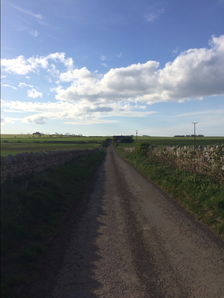 Northumberland country lanes